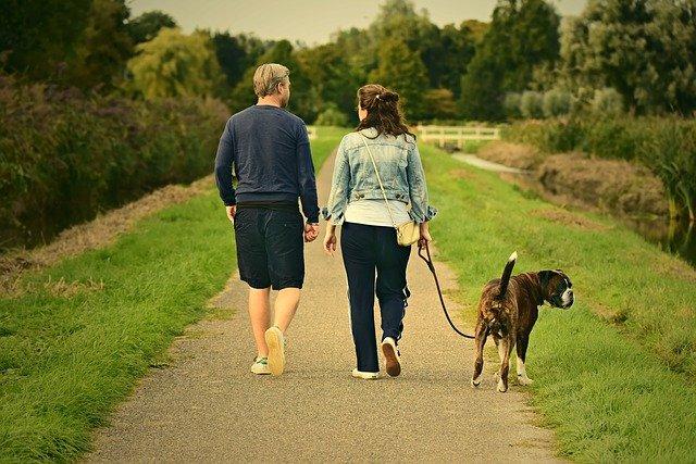 Man en vrouw die samen met hun hond wandelen