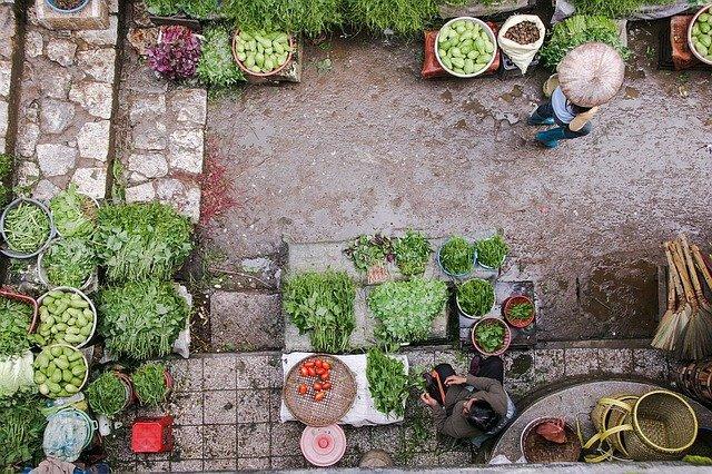 Man met eigen groenten