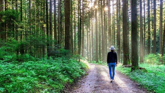 Vrouw die door de natuur loopt