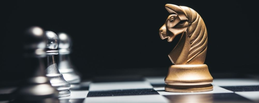 Paard bij schaken