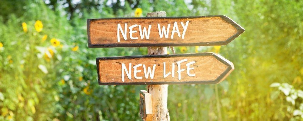 Wegwijzer met nieuw leven en nieuwe weg erop